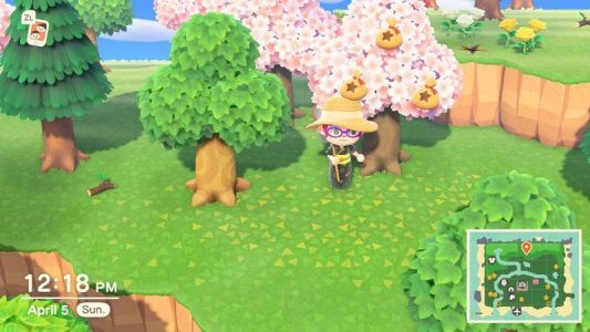 Animal Crossing: New Horizons - How to plant a money tree