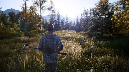Hunting Simulator 2 Releases June 30th On PS4 And Xbox One, July 16th For PC, And Later For Switch