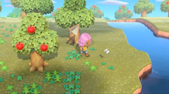 Animal Crossing: New Horzions Bug List - when to find evey bug