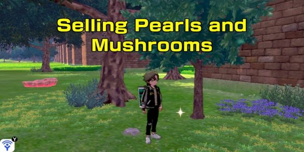 Where to Sell Pearls and Mushrooms in Pokemon Sword and Shield