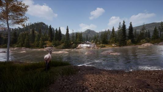 Hunting Simulator 2 launches on PC today, following console launch