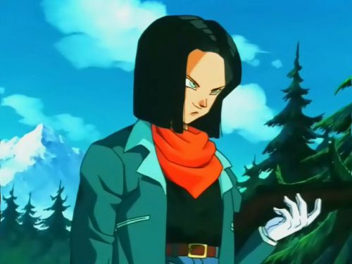 Android 17 vs Android 18