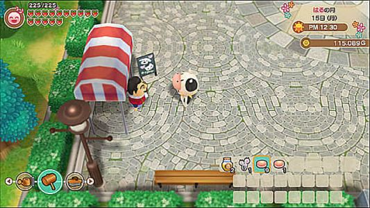 Story of Seasons: Friends of Mineral Town Pets Guide