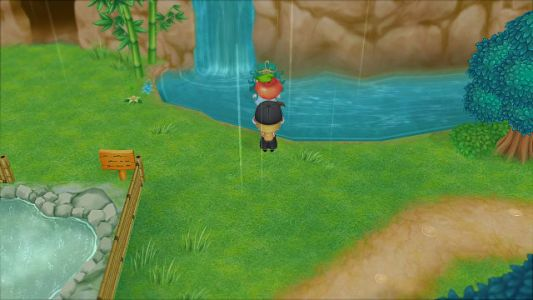 Story of Seasons: Friends of Mineral Town Power Berry Locations