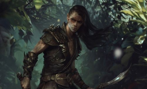 Bethesda halts all future development for The Elder Scrolls: Legends